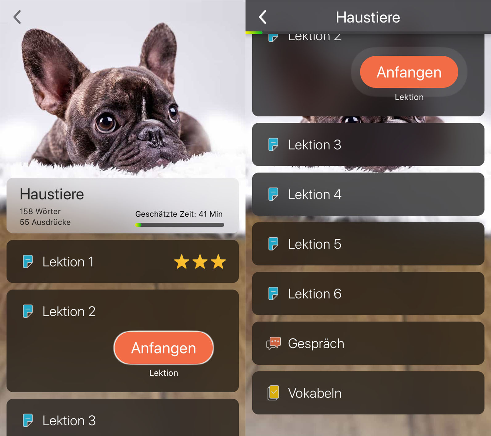 modly_app_kategorie_haustiere