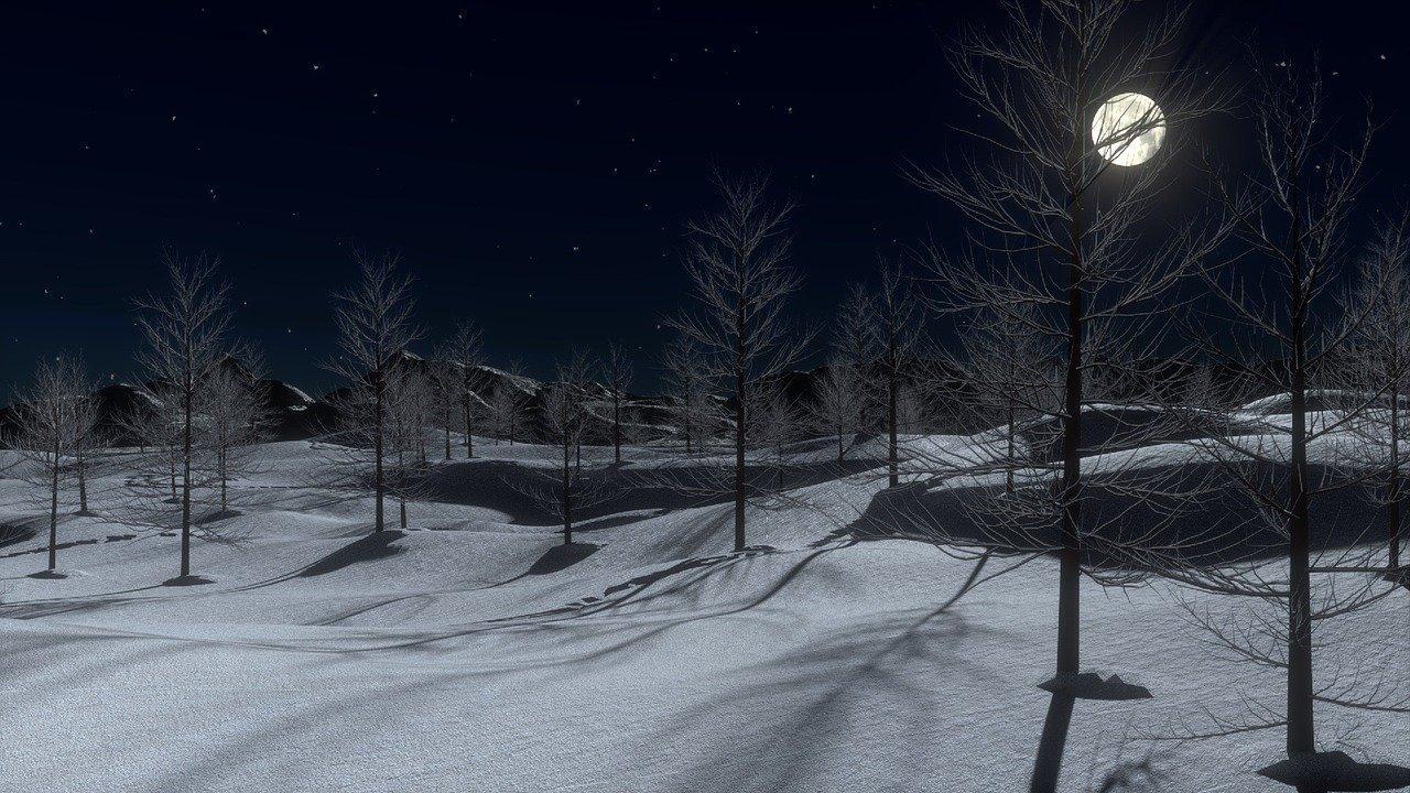 Schnee Wald Nacht